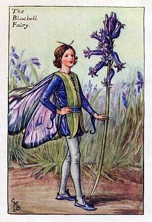 bluebell-flower-fairy.jpg