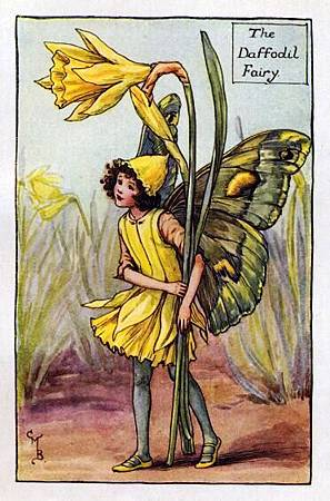 daffodil-flower-fairy.jpg
