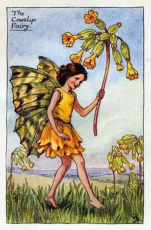 cowslip-flower-fairy.jpg