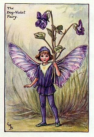 dog-violet-flower-fairy.jpg