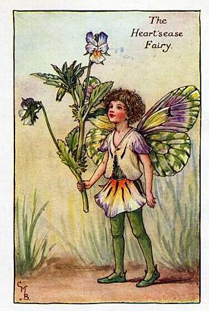 heartsease-flower-fairy.jpg