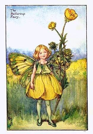 buttercup-flower-fairy