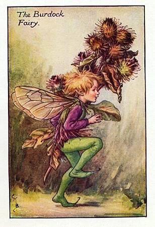 Burdock Flower Fairy.jpg
