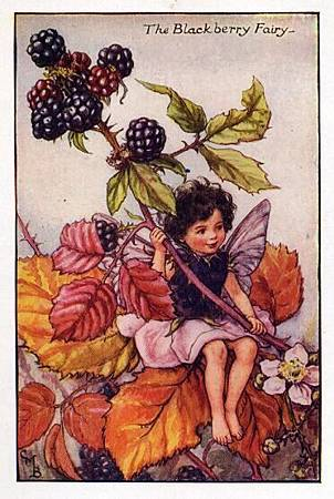 Blackberry Flower Fairy.jpg