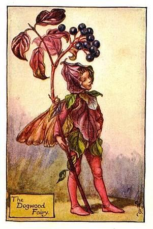 Dogwood Flower Fairy.jpg