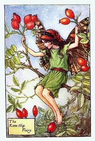 Rosehip Flower Fairy.jpg