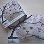 Cat and Cherry Blossoms.JPG