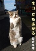 cover_tatiagaru_s.jpg