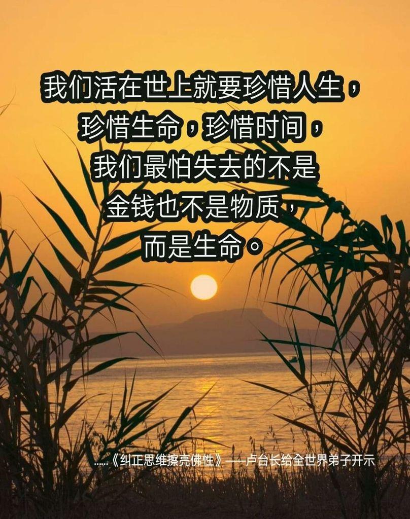 FB_IMG_1562160583706.jpg