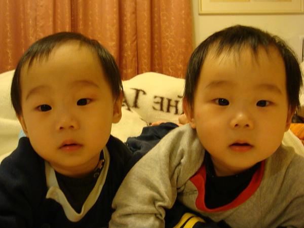 2008.03.03 家裡3個寶貝 (8).JPG