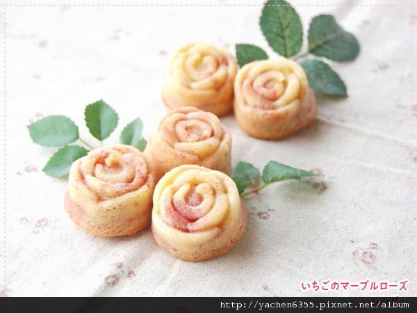 600-rose15.jpg