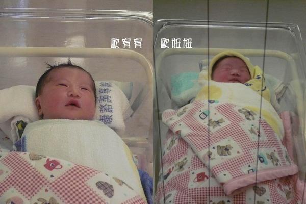 妞妞與宥宥比較圖