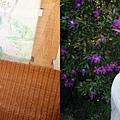 新竹薰衣草森林