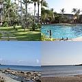 游泳池&海邊