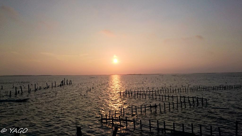 夕陽 (3 - 25).jpg