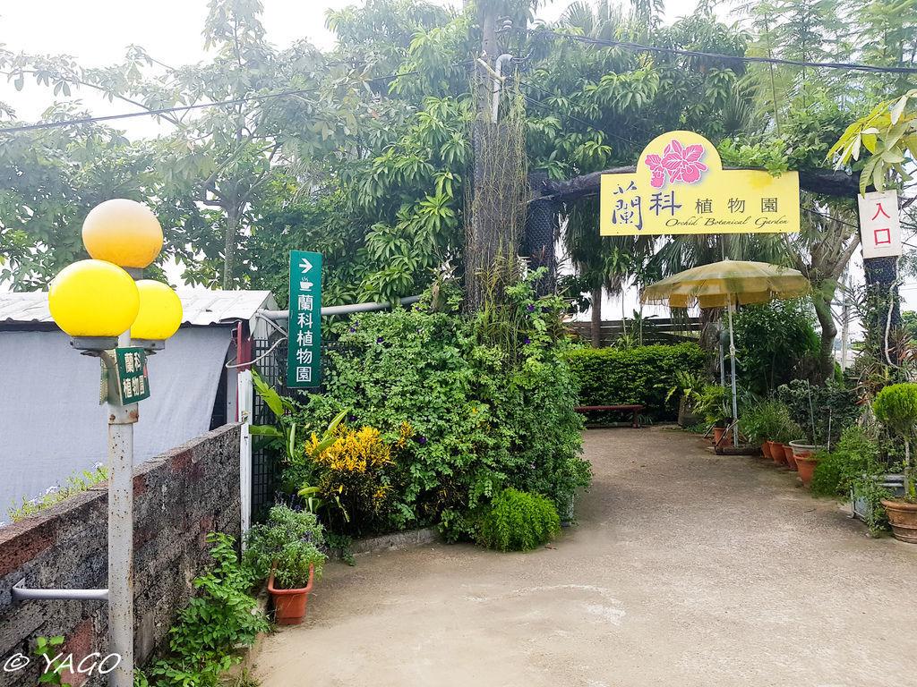 蘭科植物園 (2 - 42).jpg