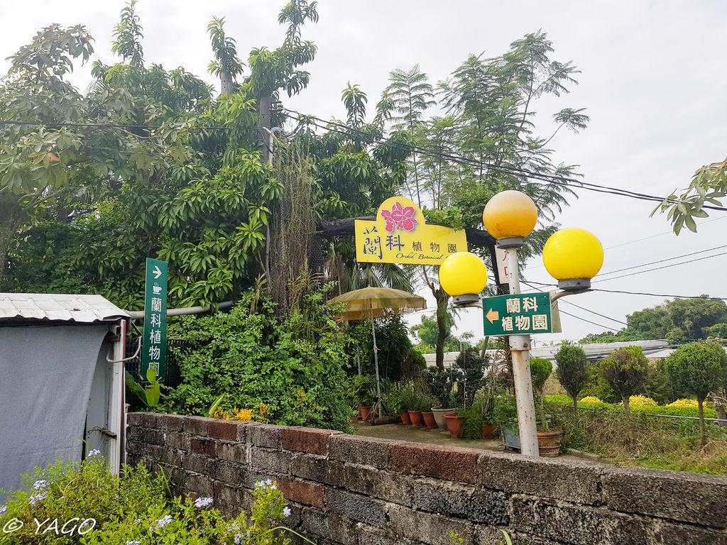 蘭科植物園 (1 - 42).jpg