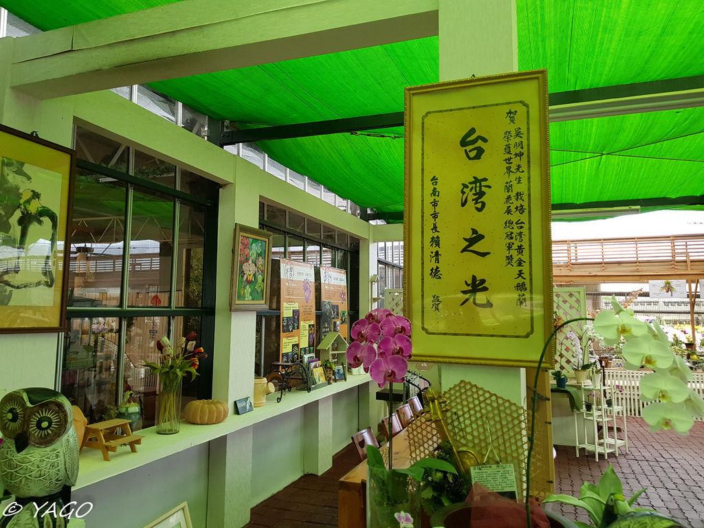 蘭科植物園 (37 - 42).jpg