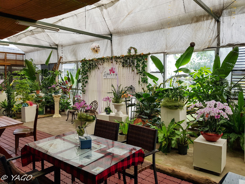 蘭科植物園 (36 - 42).jpg