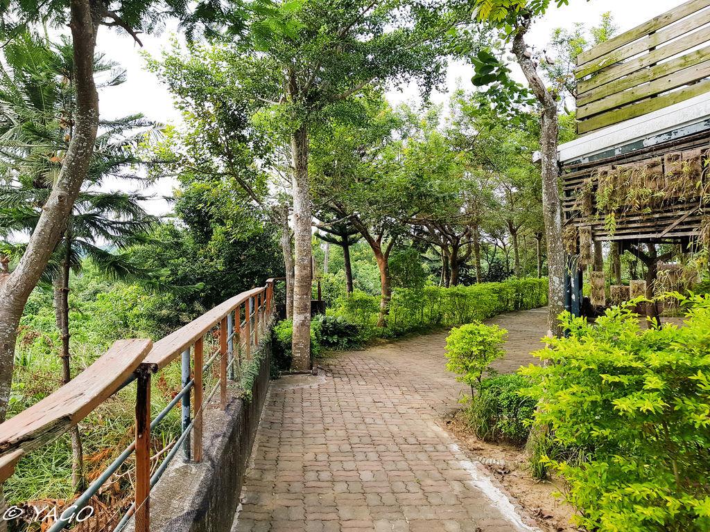 蘭科植物園 (41 - 42).jpg