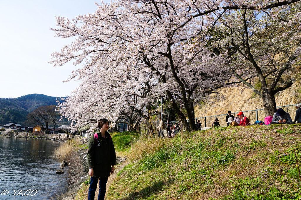 滋賀 (173 - 1096).jpg