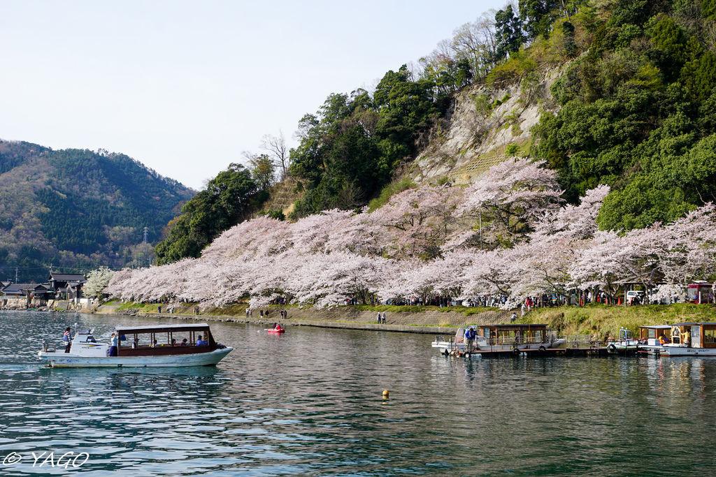 滋賀 (193 - 1096).jpg