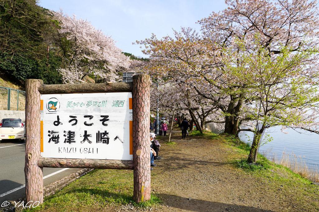 滋賀 (216 - 1096).jpg