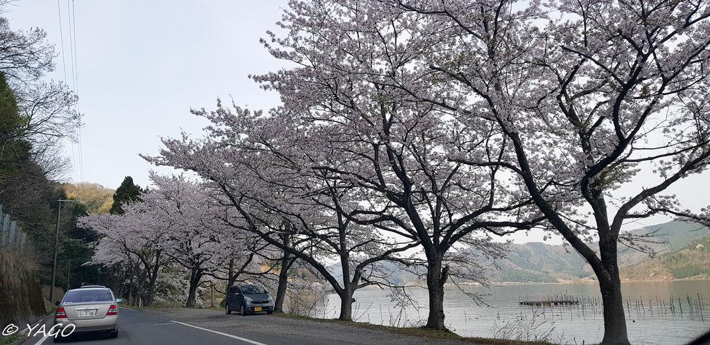 滋賀 (853 - 1096).jpg