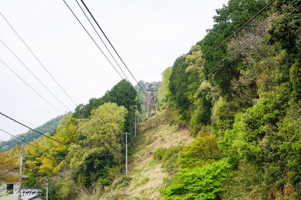滋賀 (237 - 1096).jpg