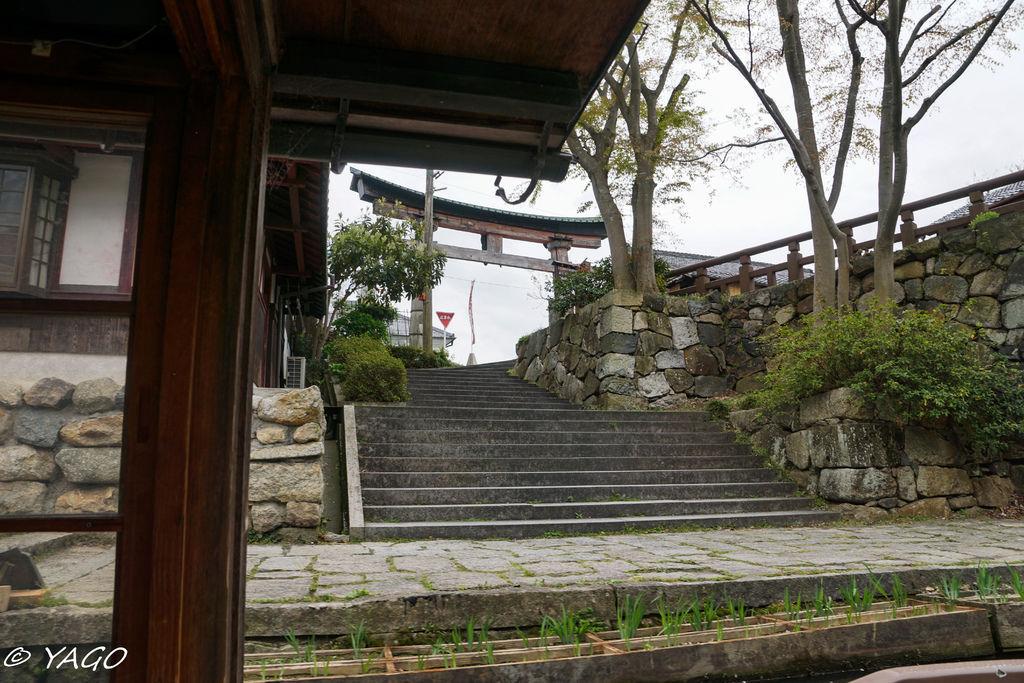 滋賀 (263 - 1096).jpg