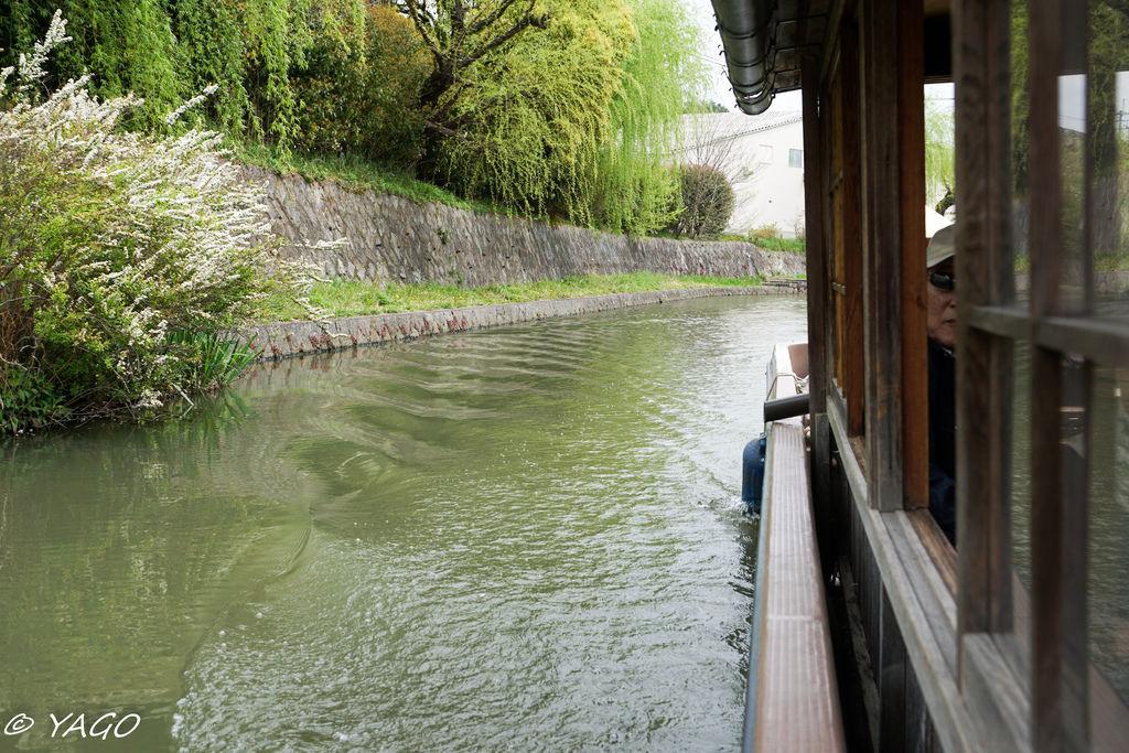 滋賀 (275 - 1096).jpg