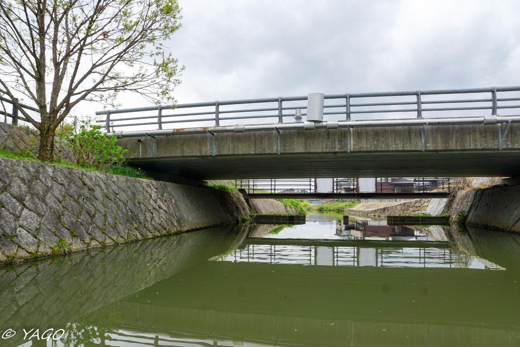 滋賀 (286 - 1096).jpg