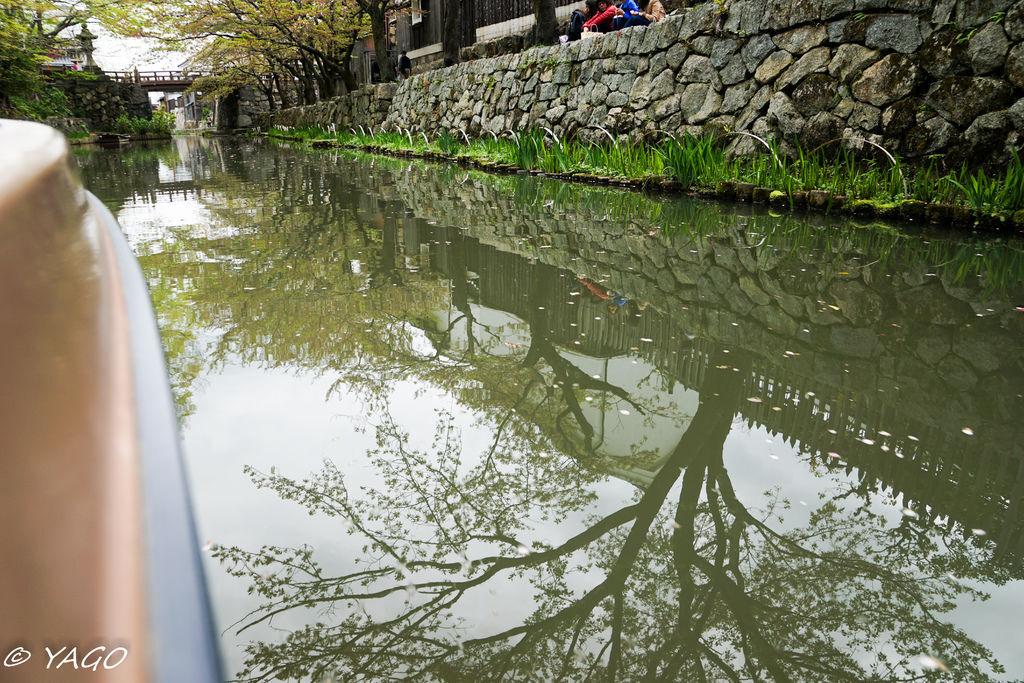 滋賀 (300 - 1096).jpg