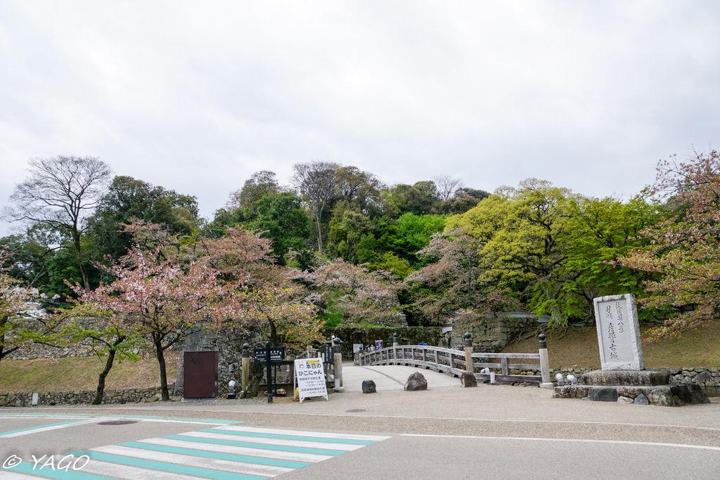 滋賀 (374 - 1096).jpg