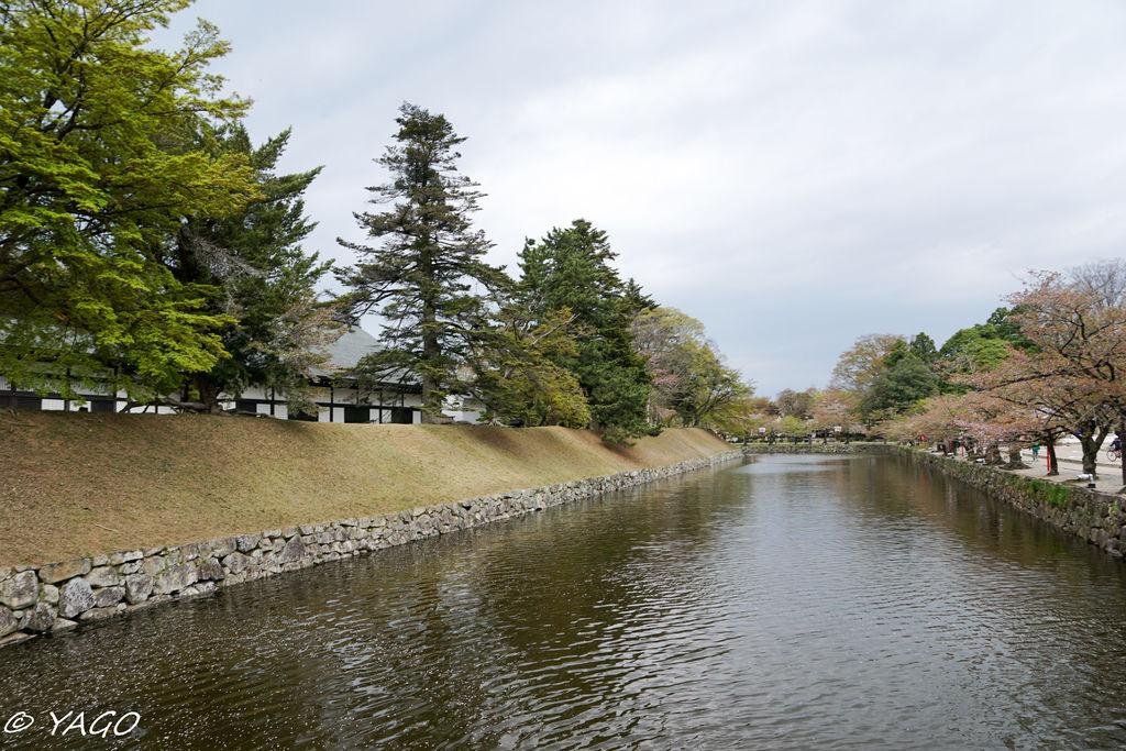 滋賀 (377 - 1096).jpg