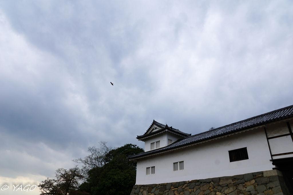 滋賀 (385 - 1096).jpg