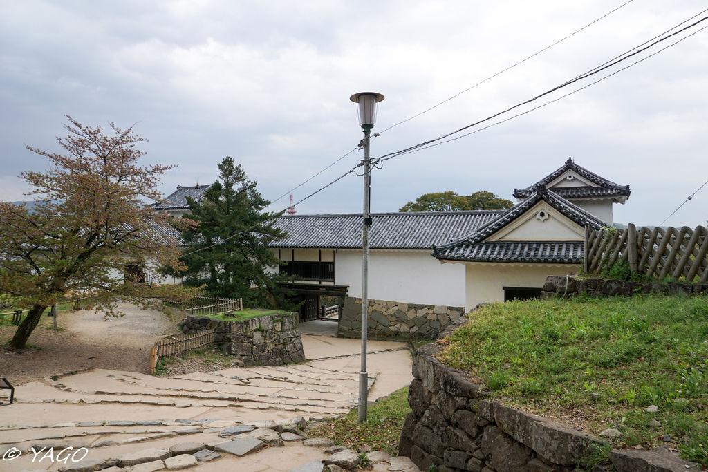 滋賀 (389 - 1096).jpg
