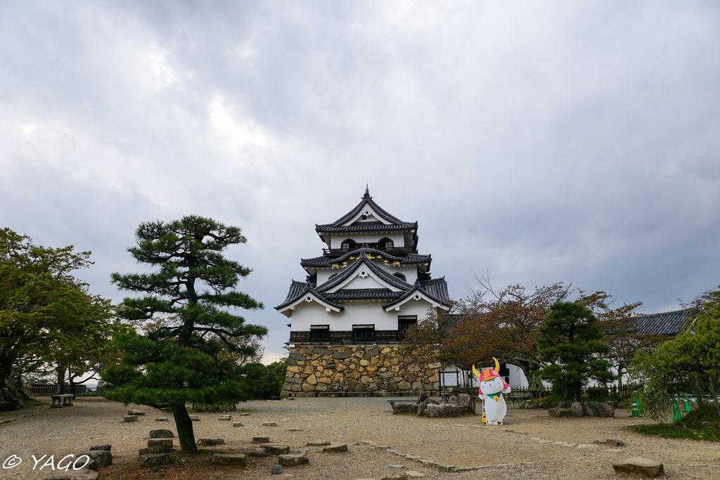 滋賀 (393 - 1096).jpg