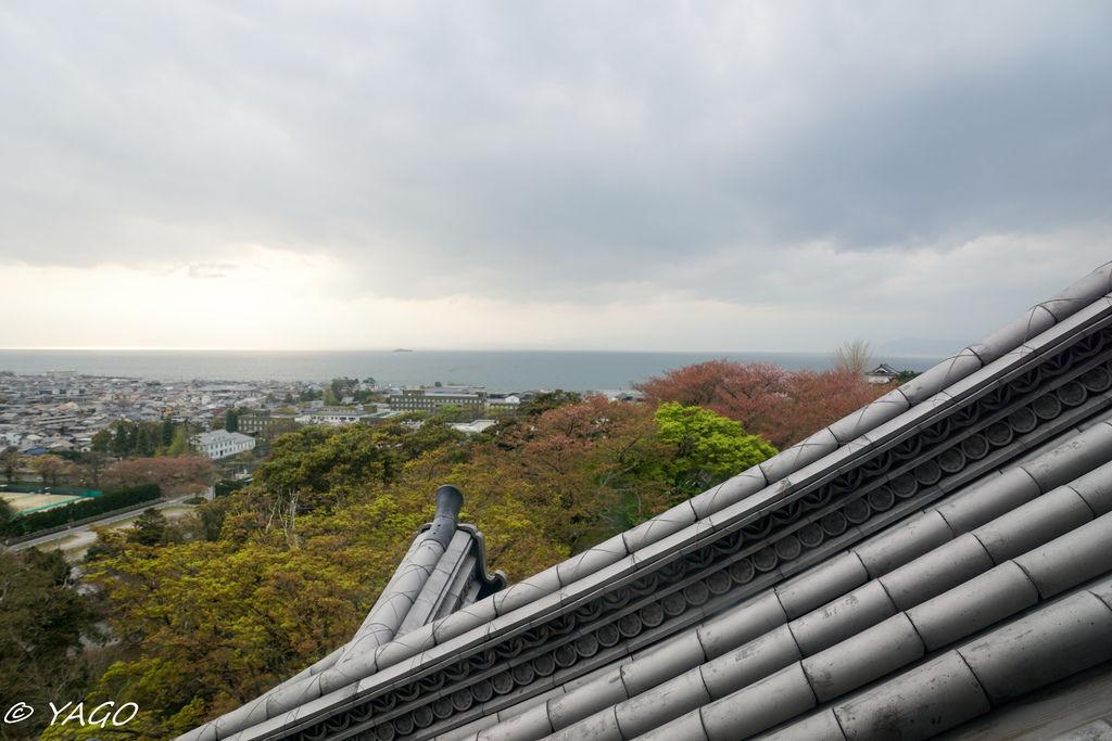 滋賀 (413 - 1096).jpg