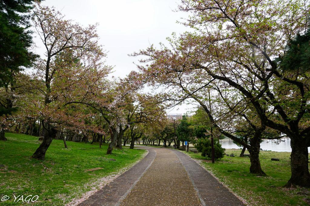 滋賀 (433 - 1096).jpg