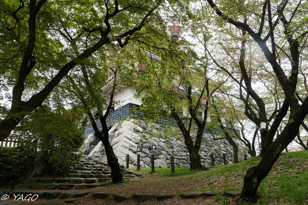 滋賀 (442 - 1096).jpg