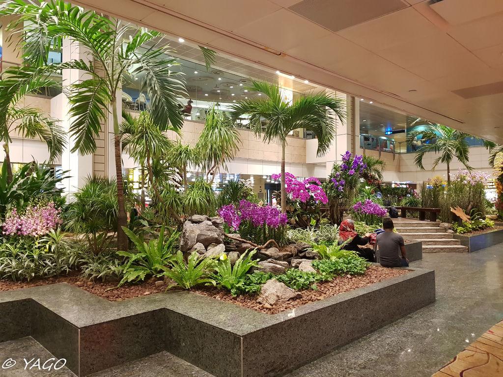 新加坡 (32 - 1007).jpg