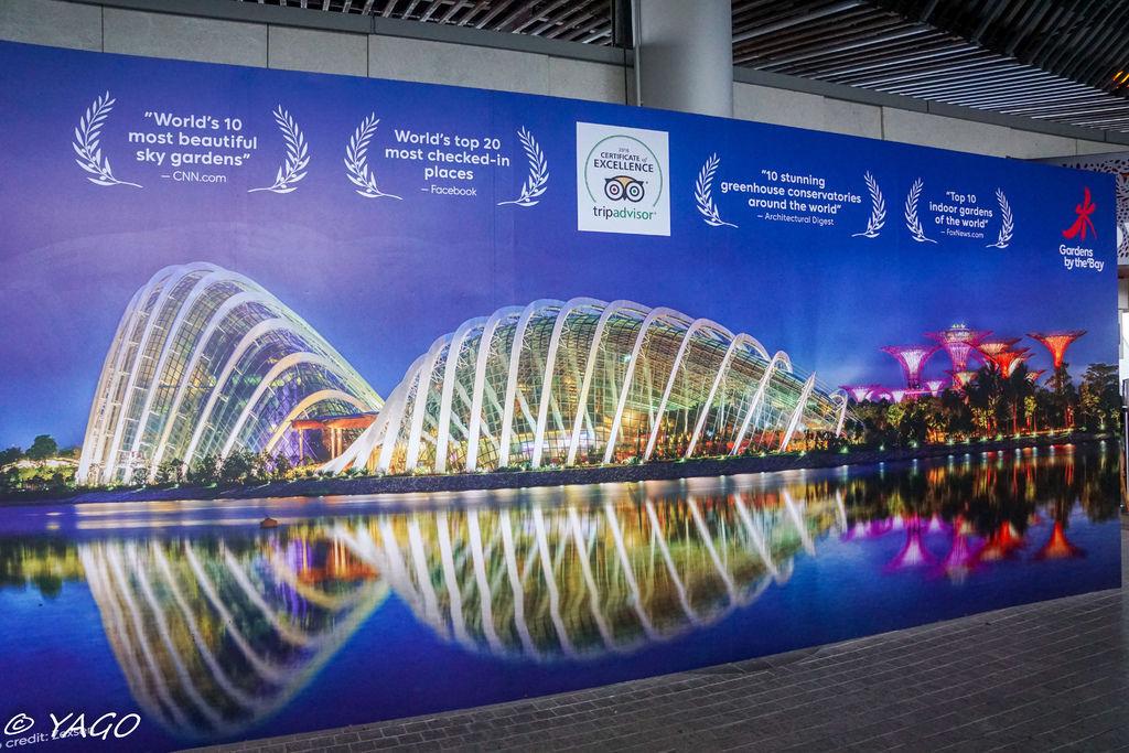 新加坡 (498 - 1007).jpg