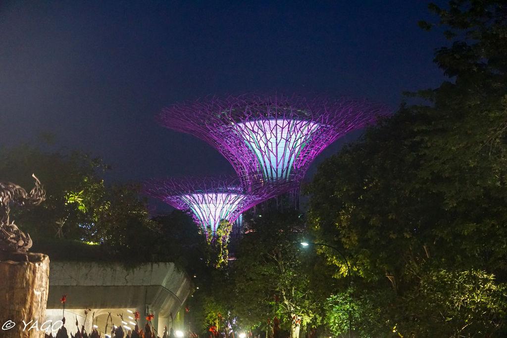 新加坡 (598 - 1007).jpg