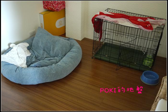 P1090577.JPG
