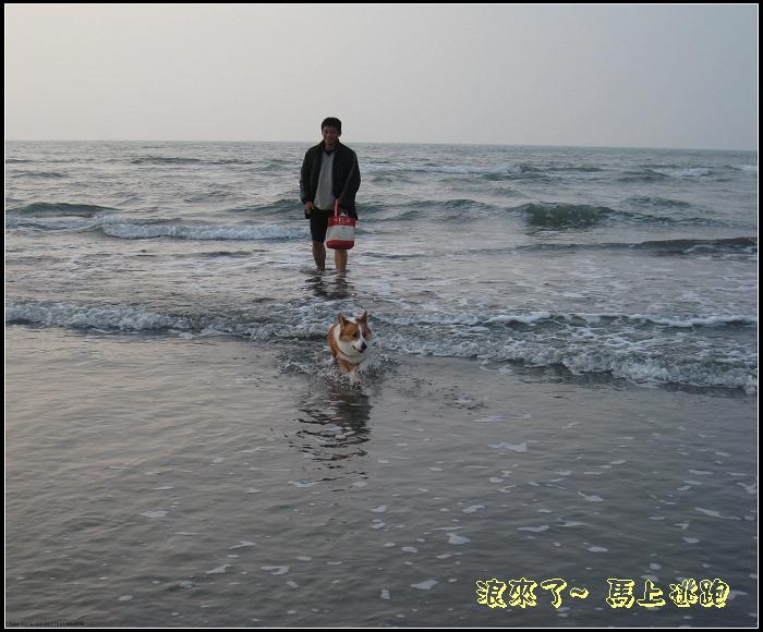 poki 星月沙灘5.jpg