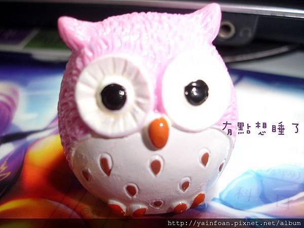 粉色貓頭鷹