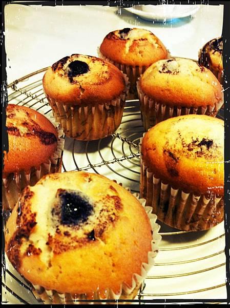 藍莓馬芬蛋糕