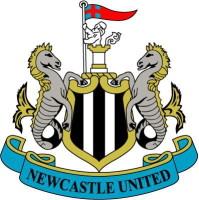 紐卡logo.jpg