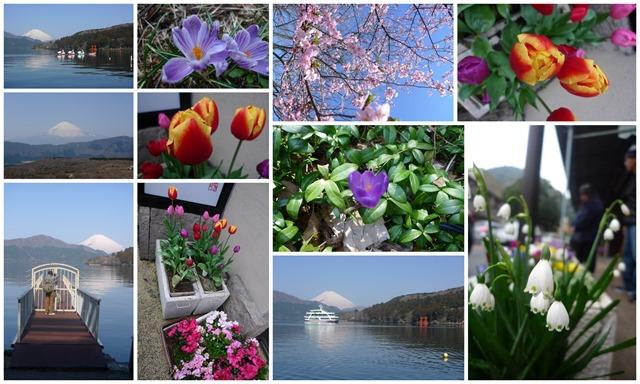 _2014 Tokyo Hakone (sceneries)1